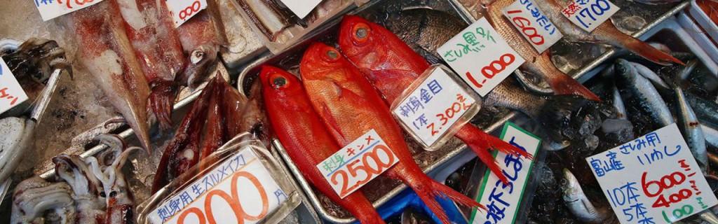 La misura della radioattività in Giappone è svolta solo su campioni di cibo: i pochi test messi in campo non garantiscono che il pescato sia salutare.