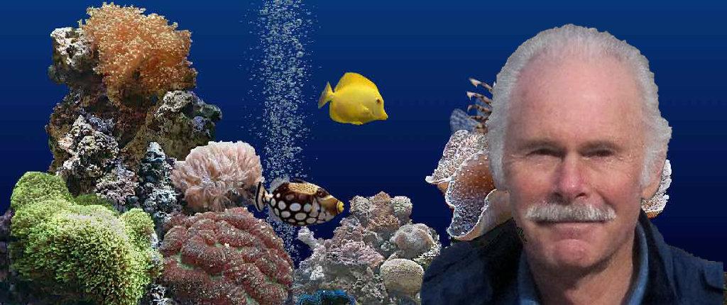 Jim Sachs and his acquarium.